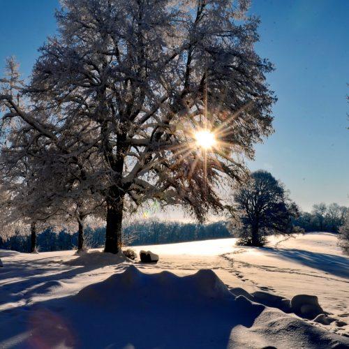 Winterlandschaft Dreifaltigkeitsberg